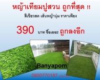 หญ้าเทียมมราคาถูกสุดสุดดดดด