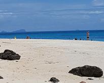 ทัวร์วันเดย์ทริป เกาะรอก เกาะห้า โดยเรือเร็ว