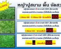 หญ้าเทียมราคาถูกมาก