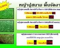 หญ้าเทียมจัดงานปูสนามจัดสวนต่างๆ