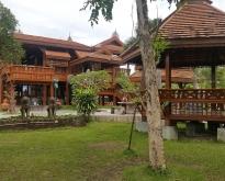 ขายบ้านทรงไทย พร้อมบ้านปูน1ขั้น และ2ชั้น เนื้อที่ 333 ตารางวา