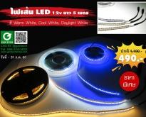 ไฟเส้น LED 12v ยาว 5 เมตร