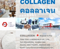 ไฮโดรไลซ์ คอลลาเจน, Hydrolyzed Collagen, ไฮโดรไลส์ คอลลาเจน, Hydrolysed Col