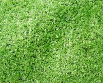 หญ้าเทียมราคาถูกที่สุด 85 บาทเท่านั้น