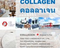 คอลลาเจน, คอลลาเจนเปปไทด์, ไฮโดรไลซ์คอลลาเจน, คอลลาเจนผง, Collagen