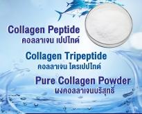 คอลลาเจน เปปไทด์, Collagen Peptide, คอลลาเจน, Collagen