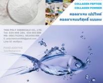 คอลลาเจน, คอลลาเจนผง, คอลลาเจนเปปไทด์, Collagen, Collagen Powder, Collagen
