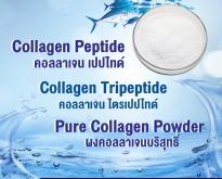 คอลลาเจนเกาหลี, คอลลาเจนไทย, Collagen Korea, Collagen Thailand