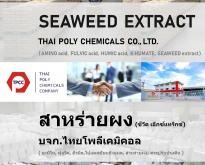 สาหร่ายผง, ผงสาหร่าย, Seaweed extract, Seaweed powder, สาหร่ายสกัด, ซีวีดเอ