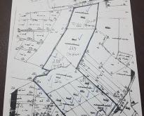 ขายที่ดิน 137 ไร่ นิคมลำนารายณ์ ชัยบาดาล ถนน 2 ด้าน ไฟ 3 เฟส