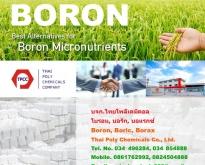 โบรอน, Boron, บอริกแอซิด, Boric acid, บอแรกซ์ 5น้ำ, บอแรกซ์ 10น้ำ, บอแรกซ์แ