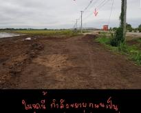 ขายที่ดิน 13ไร่ 1งาน ติดถนนเลี่ยงเมืองลพบุรี