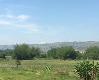 ขายบ้าน 2ชั้น พร้อมที่ดินมีโฉนด พร้อมอยู่ได้เลย วิวใกล้ภูเขามองเห็นกังหันลม