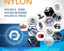 พอลิเอไมด์, พอลิเอไมด์ 6, พอลิเอไมด์ 66, พอลิเอไมด์ 12, Polyamide, PA plast